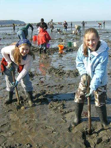 Clamming Girls!