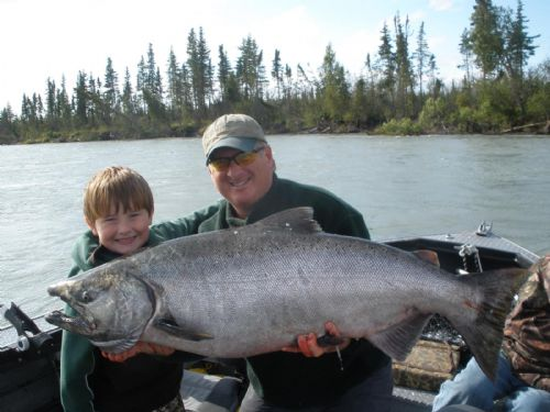 kenai river king salmon the alaska dream