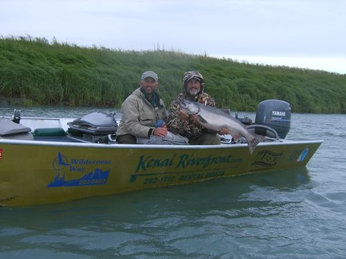 Dave's nice Kenai River King Salmon