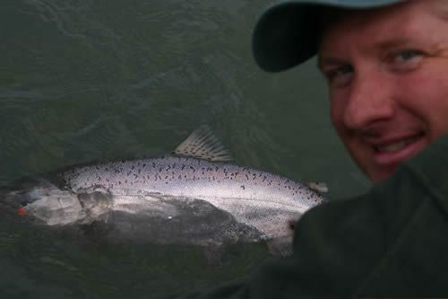 Jim Nelson Releasing a King Salmon on the Kenai River